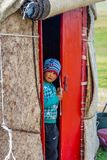 Boy looking out from the yurt Stock Photography