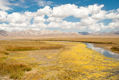 Song-Kul lake Royalty Free Stock Photo