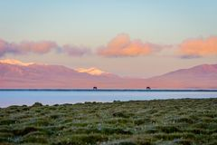 Song Kul lake with horses in sunrise. Song kul lake with two horses and purple mountain in background in sunrise, Kyrgyzstan Stock Photos