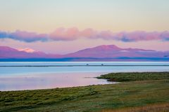 Song Kul lake with horses in sunrise. Song kul lake with two horses and purple mountain in background in sunrise, Kyrgyzstan Royalty Free Stock Photos