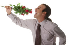 Song love. A man giving flowers to your partner Stock Photography