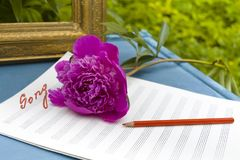 Song writing background. A blank note sheet, red flower and red pencil laid on the table Stock Images