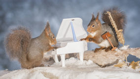 Song for you. Red squirrels in snow with saxophone and piano Stock Photo