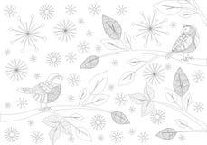 songbird vektor illustrationer