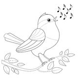 Songbird Coloring Picture. Singing bird with notes waiting to be colored Stock Photo