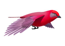 Songbird Tanager. 3d digital render of a flying songbird tanager isolated on white background Stock Image