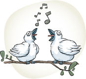Songbirds Sing. Two cartoon songbirds sing together Royalty Free Stock Photo
