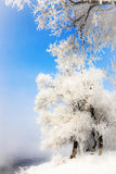Songhua River Rime. Eastphoto, tukuchina, Songhua River Rime, Nature, Beauty Stock Images