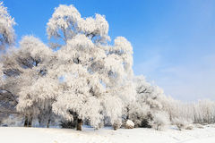 Songhua River Rime. Eastphoto, tukuchina, Songhua River Rime, Nature, Beauty Royalty Free Stock Photography