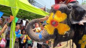 Songkran节日庆祝与大象在阿尤特拉利夫雷斯 免版税库存照片