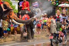Songkran节日,人们用与大象的飞溅的水享用在泰国 免版税库存图片