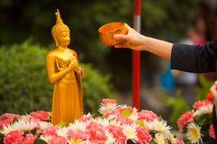 Songkran Bathing Buddha Statue Arm. A Buddhist extending an arm to pour water over a Buddha statue, a traditional cleaning given during the Thai new year of Stock Photos