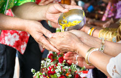 Songkran ceremony in Thailand. Respect elders in Songkran ceremony Thailand Stock Photos