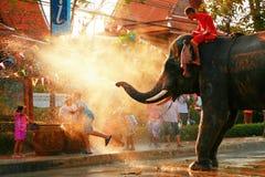 Songkran Festival Stock Images