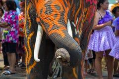 Songkran Festival in Ayudhya Stock Image