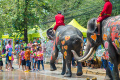 Songkran Festival in Ayuttaya. AYUTTHAYA, THAILAND - APR 14:  Revelers enjoy water splashing with elephants during Songkran Festival on Apr 14, 2015 in Ayutthaya Royalty Free Stock Images