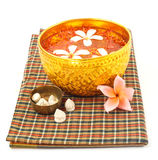 Songkran festival - Bowl of water with flowers. On white background stock images