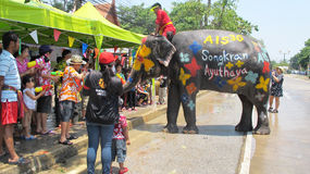 Songkran Festival is celebrated with elephants in Ayutthaya. The Songkran festival (Thai: สงกรานต์) is celebrated in Thailand as the traditional stock images