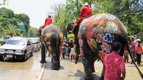 Songkran Festival is celebrated with elephants in Ayutthaya. The Songkran festival (Thai: สงกรานต์) is celebrated in Thailand as the traditional Royalty Free Stock Images