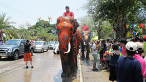 Songkran Festival is celebrated with elephants in Ayutthaya. The Songkran festival (Thai: สงกรานต์) is celebrated in Thailand as the traditional royalty free stock photos