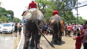 Songkran Festival is celebrated with elephants in Ayutthaya stock footage