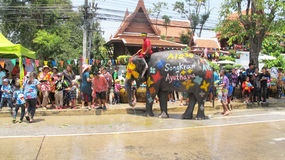 Songkran Festival is celebrated with elephants in Ayutthaya Stock Photos