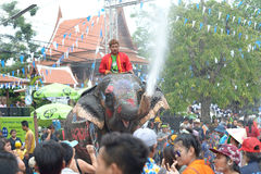 Songkran festival with elephant. 4-14-2017 Elephants have a splashing time during the Songkran Water Festival in ayutthaya Thailand Royalty Free Stock Image