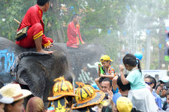 Songkran festival with elephant. 4-14-2017 Elephants have a splashing time during the Songkran Water Festival in ayutthaya Thailand Royalty Free Stock Images
