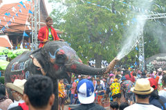 Songkran festival with elephant. 4-14-2017 Elephants have a splashing time during the Songkran Water Festival in ayutthaya Thailand Stock Photography