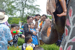 Songkran festival with elephant. 4-14-2017 Elephants have a splashing time during the Songkran Water Festival in ayutthaya Thailand Royalty Free Stock Photos