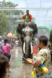 Songkran festival with elephant. 4-14-2017 Elephants have a splashing time during the Songkran Water Festival in ayutthaya Thailand Stock Images
