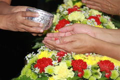 Songkran festival. Is new year in Thailand, water blessing ceremony of adults Royalty Free Stock Photos