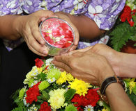 Songkran festival. Is new year in Thailand, water blessing ceremony of adults Royalty Free Stock Image