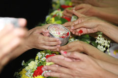 Songkran festival. Is new year in Thailand, water blessing ceremony of adults stock image