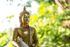 Songkran Festival. Sprinkle water onto a Buddha image in Sonkkran Festival Stock Photography