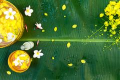 Songkran Festival or Thai New Year. Colorful flower in water gold color bowls decorating and scented water, perfume, on Banana leaf for Songkran Festival or Stock Photos