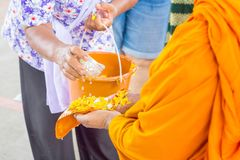 Songkran festival in Thailand, Hand woman use the water pouring to monk. Traditions that have long inherited Stock Photos