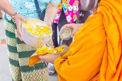 Songkran festival in Thailand, Hand woman use the water pouring to monk. Traditions that have long inherited stock image