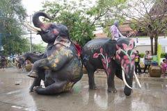 Free Songkran Festival With Elephant AyuttayaThailand Royalty Free Stock Image - 39190126