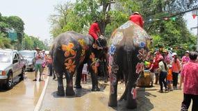 Songkran festiwal świętuje z słoniami w Ayutthaya Obraz Royalty Free