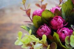 Sonhando a flor cor-de-rosa Imagens de Stock