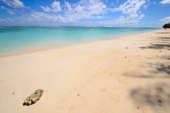 Sonhando Ilhas Cook Fotos de Stock