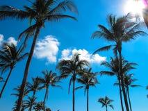 Sonho da movimentação do oceano de MIAMI imagens de stock royalty free
