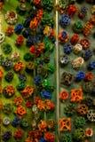Sonho da multidão dos punhos coloridos da válvula Fotografia de Stock
