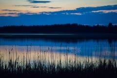 Sonho das noites de plenos verões Imagens de Stock