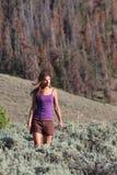 Sonho de Colorado Imagens de Stock