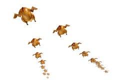 Sonho do caçador:) Imagem de Stock