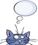 Sonho do gato Foto de Stock Royalty Free