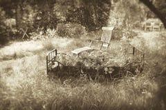 Sonho do jardim no sepia imagens de stock royalty free