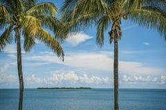 Sonho do paraíso Uma oportunidade fotos de stock